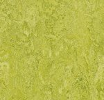Marmoleum Real 2,0mm 3224 Chartreuse