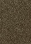 Creatuft Sintra 2666 Anthracite